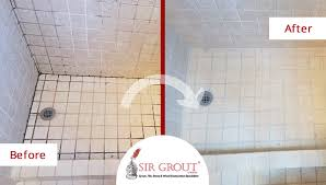Mold In Bathroom Shower Learn How Our Highly Experienced Tile And Grout Cleaners In