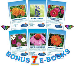 bulk seed packets monarch rescue collection wildflower seeds bulk 8 bonus
