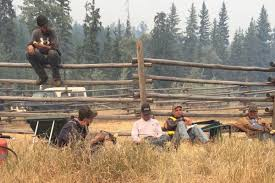 Wildfire Quesnel by Riske Creek Ranchers Go It Alone In Fight Against Dangerous