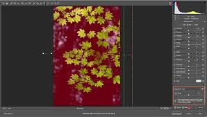 make local adjustments in adobe camera raw