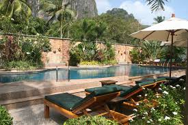 Small Tropical Backyard Ideas Backyard Designs With Pool Phenomenal 23 Small Ideas To Turn