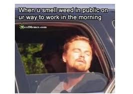weed memes weed memes marijuana memes pot memes stoner