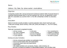 sample achievements for resume sample resume for a student sample