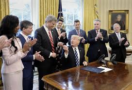 trump u0027s first 100 days photos abc news