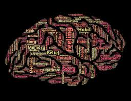introduction to psychology study guide top 10 german universities to study psychology study in germany