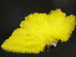 extra large feather fans ostrich feather fans dyed costume feathers