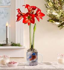 53 best flower gardens gifts images on garden gifts