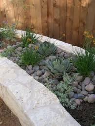 Texas Landscape Plants by A Wonderful List Of Desert Plants That Are Good For Landscaping