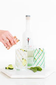 cuber mint cooler recipe and free diy work