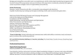 Online Marketing Resume by Digital Marketing Consultant Exemple De Cv Work Experience Digital