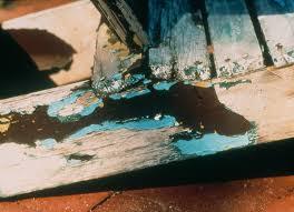 problem solver paint quality institute