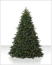 9 foot christmas tree 9 ft douglas fir multi lit christmas tree christmas tree market