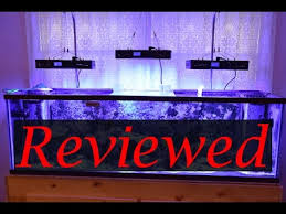 sb reef lights review euphotica programmable 16 led reef lights review after 4 months