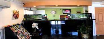 hotels in national city ca cassia hotels san diego boutique