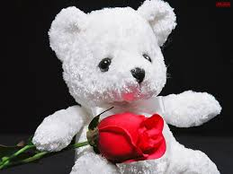 be mine teddy free wallpaper in best high desnsity quality for be mine