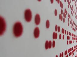How Do Blind People Read Braille Deaffriendly Ridiculist Deaf People Read Braille