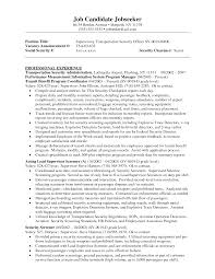 It Security Resume Examples by Security Resume Sample
