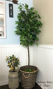 how to update a faux houseplant to look new salvage and