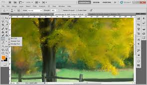 use the mixer brush in photoshop cs5 to turn a photo into a