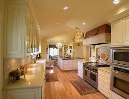 kitchen magnificent beige themed kitchen color style with