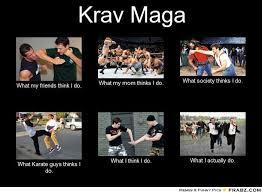 Muay Thai Memes - the battle for krav maga supremacy an open letter to the krav maga