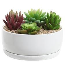 planter for succulents succulent pots amazon com