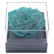 teal roses theonlyroses crystalline box real roses that last at least one