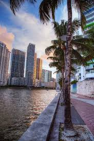 152 best i love you miami images on pinterest south florida