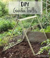 make a cucumber trellis using a fence panel gardening