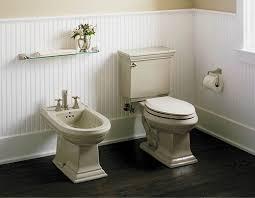 Combined Bidet Toilets Bidet Toilet Combo Home Depot Kohler Aquapiston Flushing
