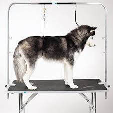 Dog Grooming Table For Sale Master Equipment Zinc Plated Steel Overhead Pet Grooming Arm