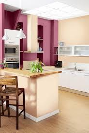 purple modern kitchen fioletowy kolor w kuchni kuchnie inspiracje pinterest