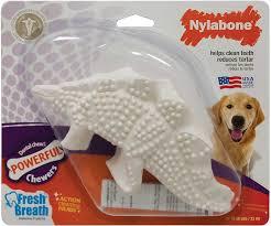 nylabone durachew dental chew dino dog toy large chewy com