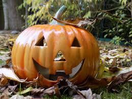 free images decoration orange produce autumn pumpkin