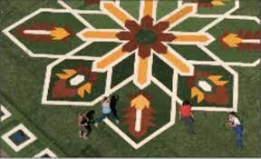 concept u2013 flying grass carpet
