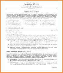 Samples Of Resume Summary Resume Professional Summary Sample Summary Example For Resume