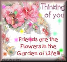 thinking of you flowers thinking of you friends are the flowers in the garden of