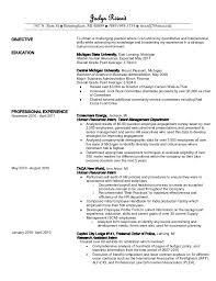 Michigan Resume Builder Structure Essay Basic Clever Words To Put In An Essay Resume