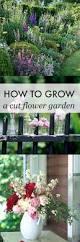 flower gardens best 25 flowers garden ideas on pinterest flower gardening