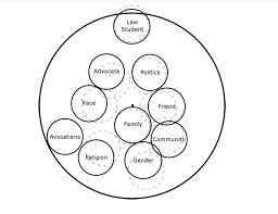 identity map hls clp the practice the professional identity br formation