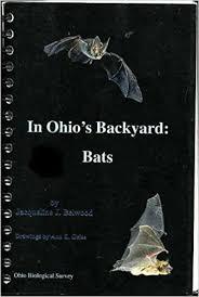Backyard Series In Ohio U0027s Backyard Bats Ohio Biological Survey Backyard Series