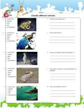 animal worksheets games u0026 quizzes for kids science