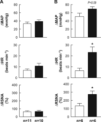 prenatal programming of hypertension induces sympathetic