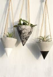 Plants And Planters by Best 25 Concrete Planters Ideas Only On Pinterest Concrete Pots