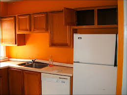 Home Depot Refinishing Kitchen Cabinets Kitchen Types Of Kitchen Cabinets Home Depot The Best Paint For