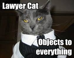 Lawyer Dog Memes - lawyer cat meme in threat to lawyer dog supremacy legal cheek