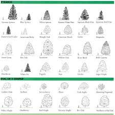 tree architecture search g h garden