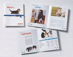 chairman s annual report template annual report kel design