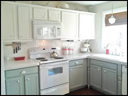 Paint For Kitchen by Charming How To Paint Kitchen Cabinets White Pictures Design Ideas