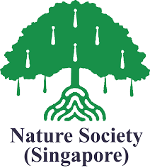 Singapore Flag Icon Every Singaporean A Naturalist Inaturalist Org